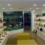 loja-shopping-morumbi-1